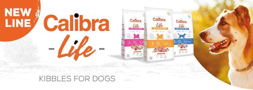 700 calibra life banner new line 840x300 12
